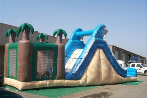 Inflatable Interactive Games dolphin paradise slide jump
